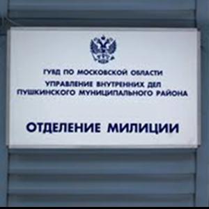 Отделения полиции Новошешминска