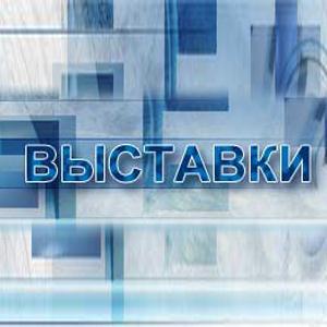 Выставки Новошешминска